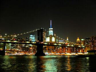 Crucero con cena en Nueva York - Skyline