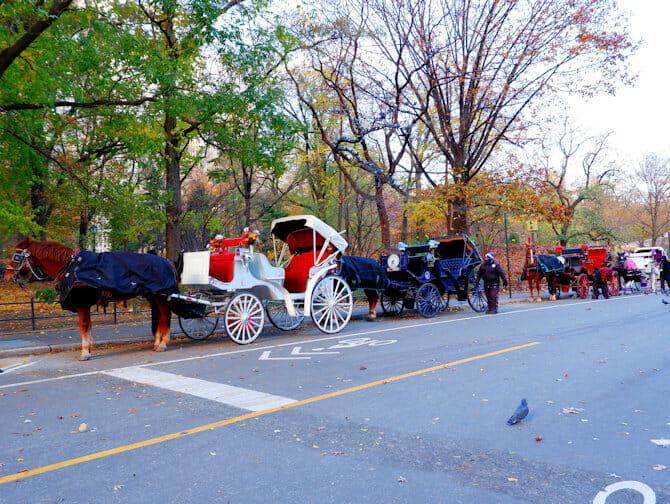 Paseo en coche de caballos por Central Park - calesa
