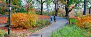 Parques en Nueva York