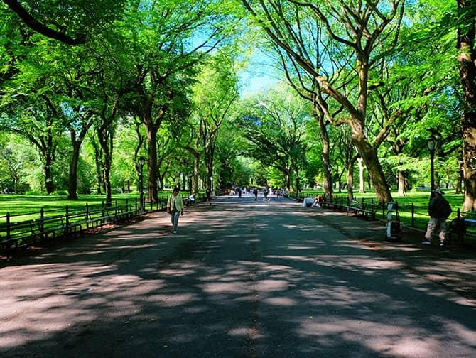 Labor Day en Nueva York - Caminando por Central Park