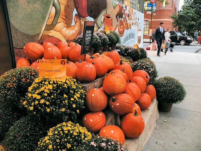 Halloween en Nueva York - calabazas