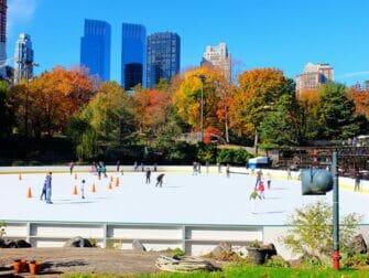Central Park Movie Tour - Wollman Rink