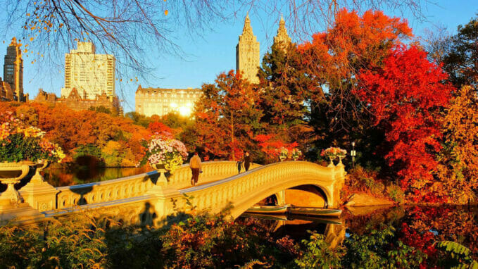 Otoño en Central Park – Zoom
