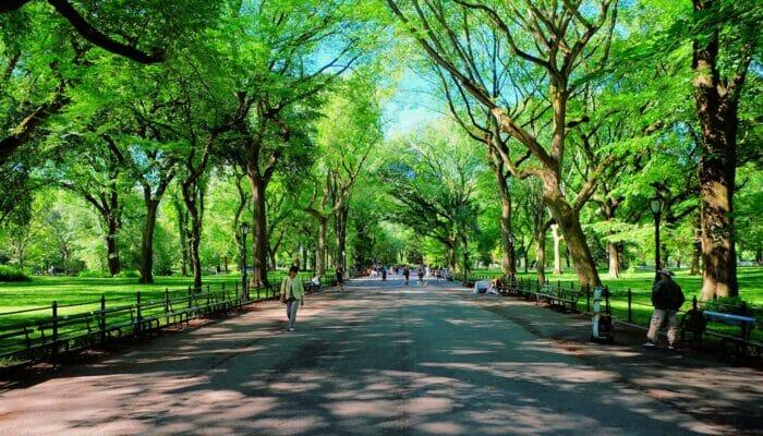 Dia de la Madre en Nueva York - The Mall en Central Park