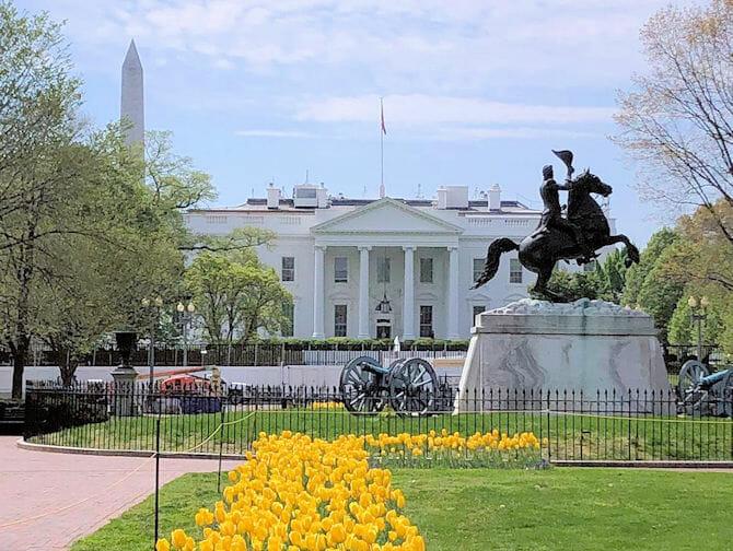 Pases para atracciones en Washington D C