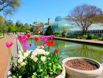 Jardines botánicos en Nueva York - Brooklyn Botanic Garden