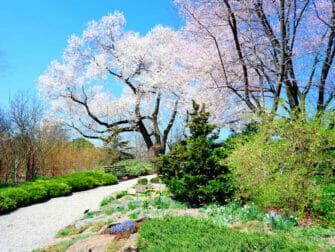 Jardines botánicos en Nueva York - Jardín botánico en el Bronx