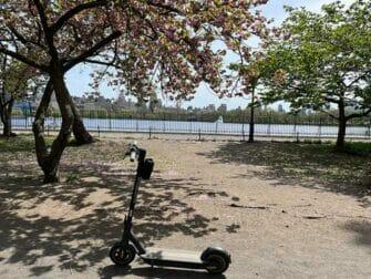 Alquiler de patinetes eléctricos en Nueva York - Patinetes eléctricos